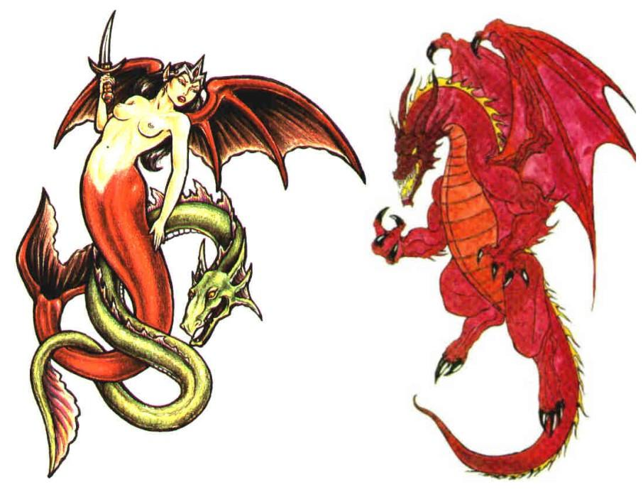 татуировки с тиграми и драконами фото